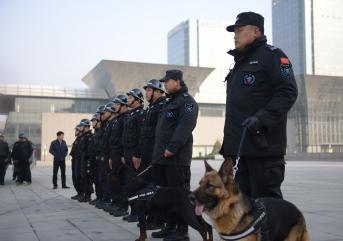 保安公司在自己的规模上又哪些优势!